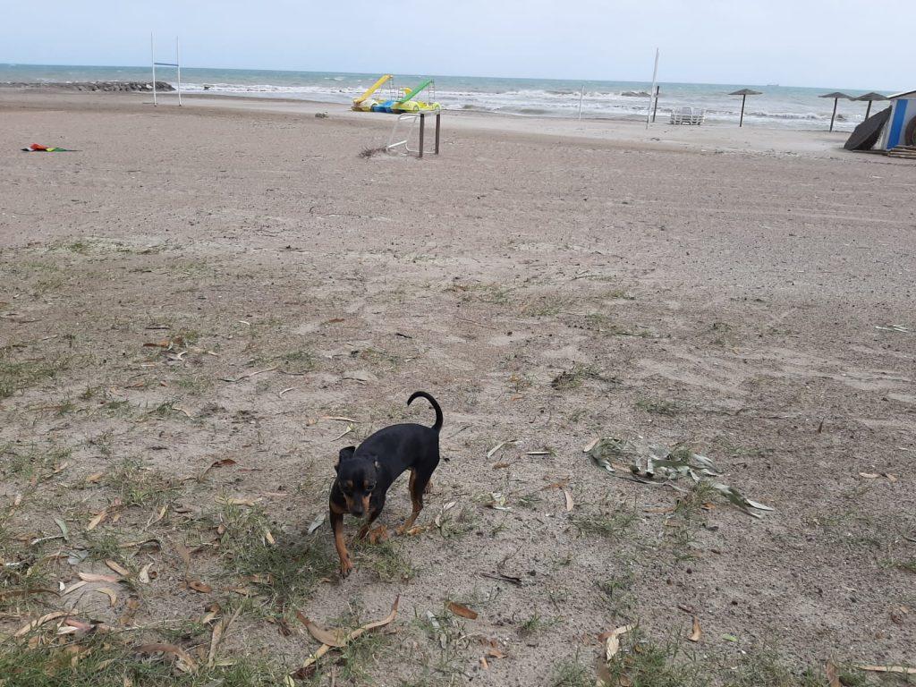 Jugando en la playa desierta